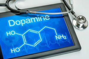 Гормон допамин