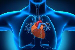 Негативное влияние курения на сердечно-сосудистую систему