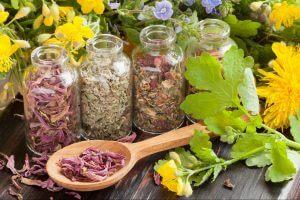 Применение трав для очистки легких