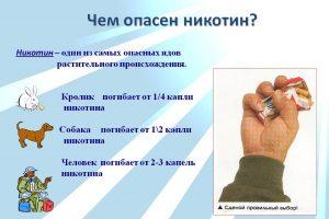 Чем опасен никотин