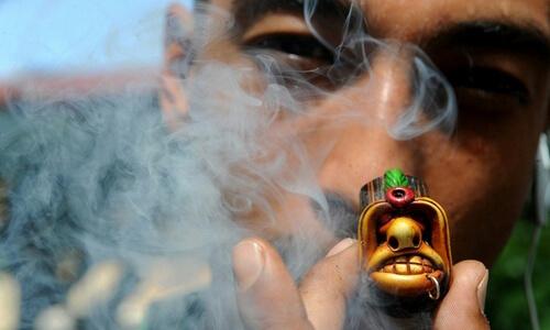 Вред марихуаны для организма
