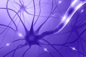 Негативное влияние никотина на нервную систему
