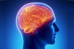 Влияние никотина на сосуды мозга