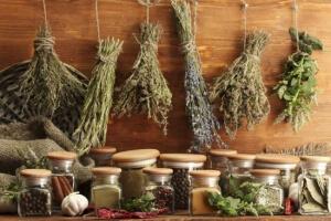 Использование различных трав в растворах для ингаляций