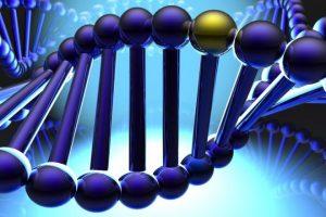 Генетическая предрасположенность к курению