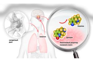 Подмена никотина цитизином