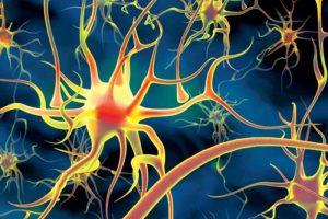 Воздействие никотина на нервную систему