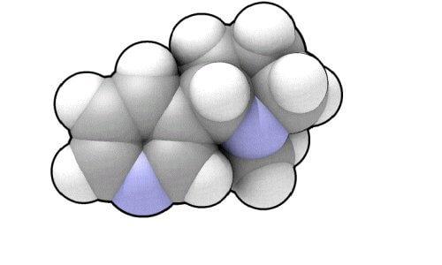 Вред никотина для организма человека