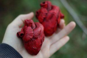 Развитие врожденных аномалий сердца под действием никотина