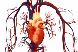 Увеличение нагрузки на сердце при курении