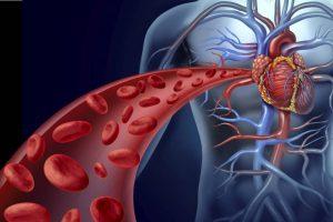 Влияние никотина на сердце и сосуды