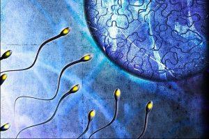 Восстановление мужской репродуктивной функции через год после отказа от курения