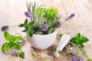 Применение трав для очищения легких