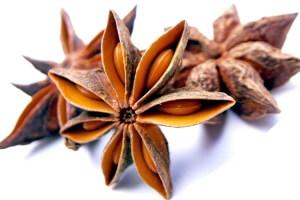 Плоды аниса для очищения бронхов