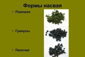 Как употреблять насвай в гранулах