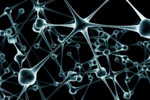 Влияние токсинов на нервную систему ребенка