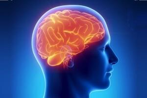 Вред курения марихуаны для мозга