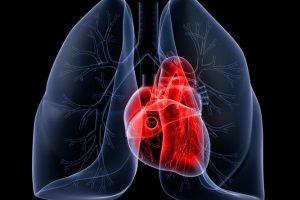 Очищение сердца и легких на второй стадии
